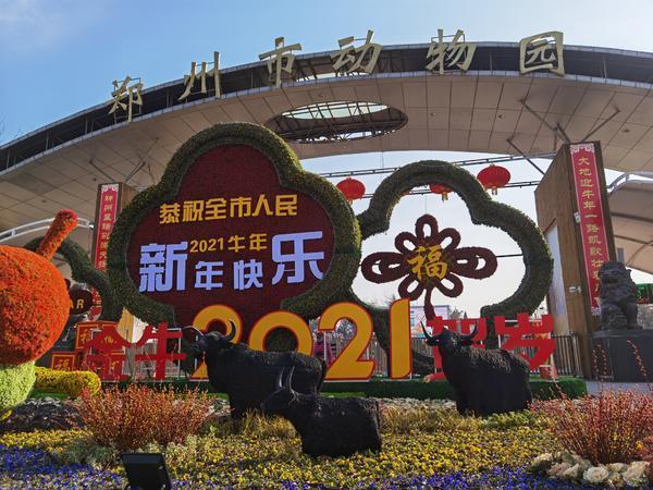 郑州聊吧-经过检疫隔离后 万只鹦鹉郑州市动物园内迎新年(4)