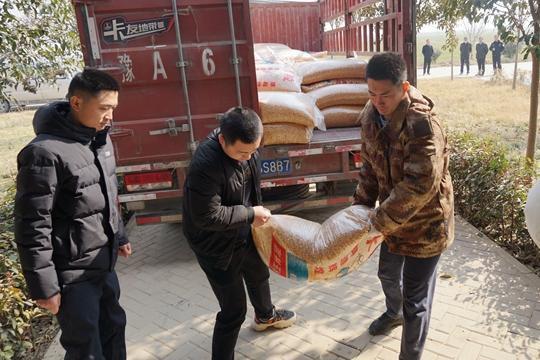 郑州聊吧-万斤冬粮让候鸟在中牟舒坦过冬 这个新年礼包很厚实(1)