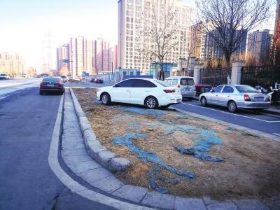 郑州聊吧-郑州碧云路500米路段已通车7年为啥绿化带一直还露着黄土?(1)