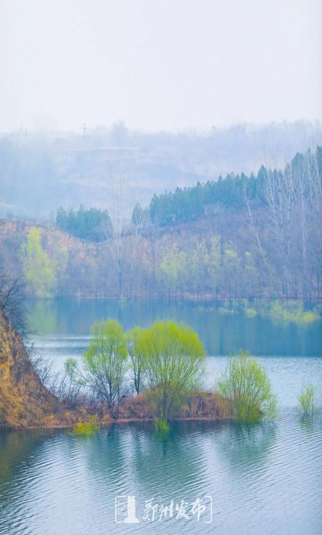 郑州聊吧-油菜花盛开!郑州这个水库的美景藏不住了(5)