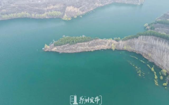 郑州聊吧-油菜花盛开!郑州这个水库的美景藏不住了(15)